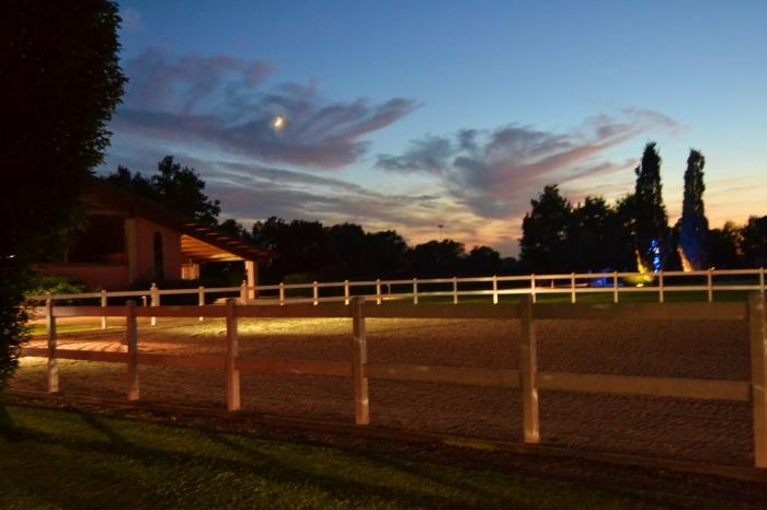 Class Horse Tv Pegaso Night