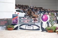 GP presented by Fixdesign - Emilio Bicocchi on Ares Verona,13th nov.2016 ph.Stefano Grasso/Jumping Verona